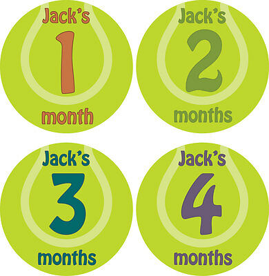 Personalised Monthly Baby Stickers, Milestone Stickers, Baby Shower Gift_B009