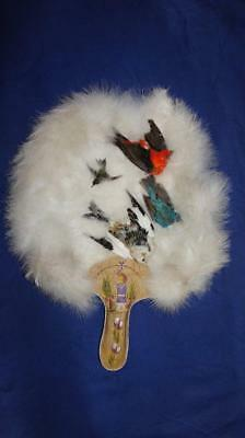 Superb Native American Huron Wendat Taxidermy Feather Fan