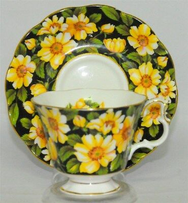 Royal Albert Diana Teacup & Saucer Set (Tea Cup) Black Yellow Floral