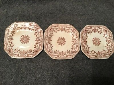 Antique 1885 T&R Boote TOURNAY Brown & White TRANSFERWARE Ironstone BUTTER PAT
