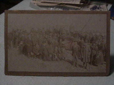 Antique Photo Of People Gathering Around A Whale In San Pedro?
