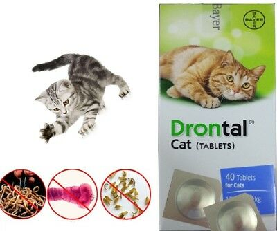 Drontal Bayer Dewormer for Cat Allworms Round and Tap Worm 4 tablets