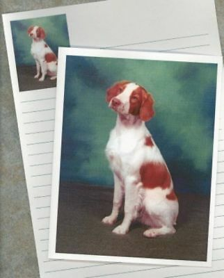 BRITTANY SPANIEL 300 Personalized Business Cards #0673