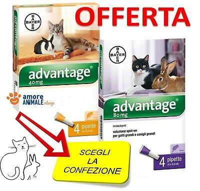 Bayer Advantage - 4 pipette - per GATTI e Conigli - Antiparassitario
