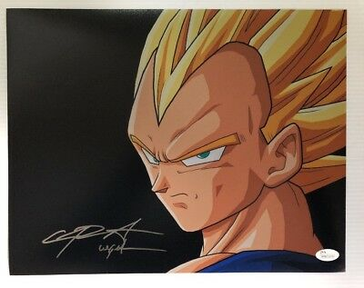 Chris Sabat Signed Autographed 11x14  Photo Dragon Ball Z Vegeta JSA COA
