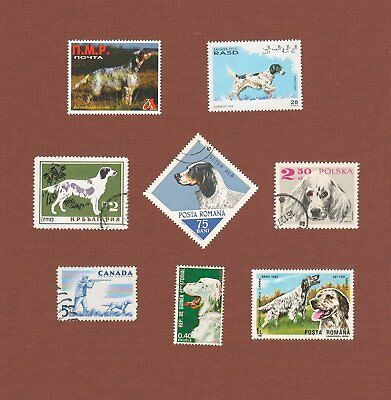 English Setter dog postage stamps set of 8