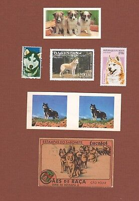 Siberian Husky sled dog postage stamps and trade cards, set of 6