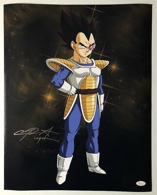 Chris Sabat Signed Autographed 16x20 Photo Dragon Ball Z Vegeta JSA COA 10