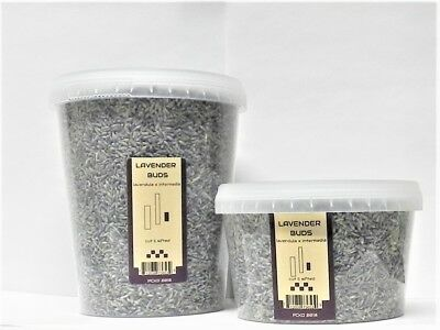 Lavender Flowers Buds Dried 1 2 3 4 5 6 8 10 oz Airtight Container-Culinary grd