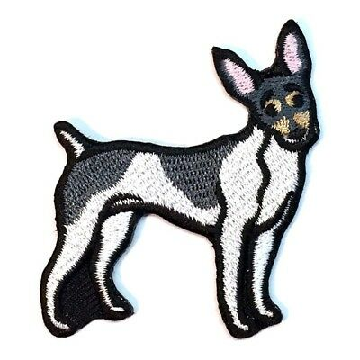 Toy Fox Terrier Iron On Embroidered Patch