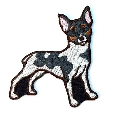 Rat Terrier Iron On Embroidered Patch
