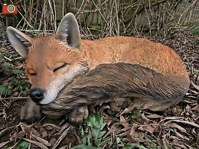 A Sleeping Fox, Large & Stunning, Home & Garden. Ultra Realistic, Vivid Arts