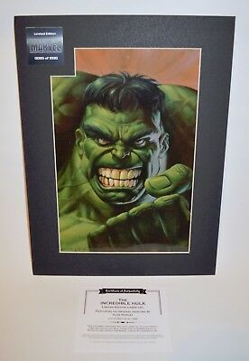 Marvel The Incredible HULK Limited Edition Alex Horley LASER CEL with COA, 16x12