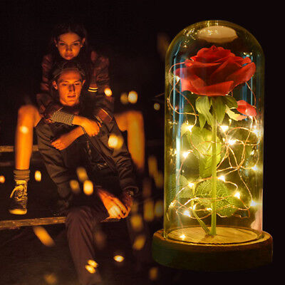 WR Beauty and the Beast Enchanted Rose In Glass Dome Lamp LED Light Wedding Gift