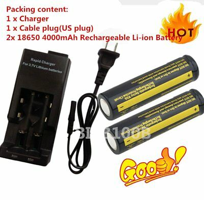 2X18650 4000mAh 3.7V Rechargeable Li-ion Battery + Charger For FlashlightgU