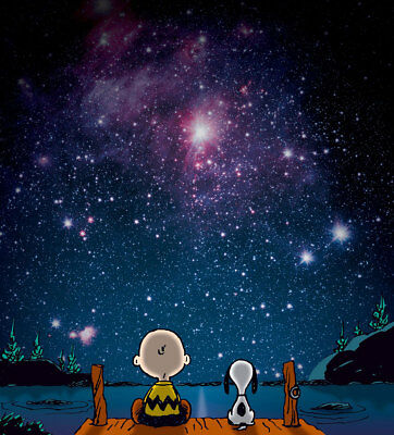 Home Decor Art Print on Canvas Oil Painting Etchings Peanuts Stars 18X20