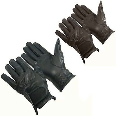 (Black, Small - 17cm  - 18cm ) - Bitz Adults Horse Riding Leather Gloves AND