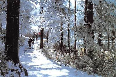 China A mountain path covered with snow
