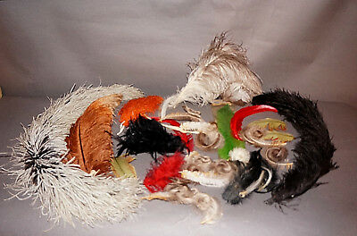 Large Antique Lot Millinery Feathers Ostrich Plumes