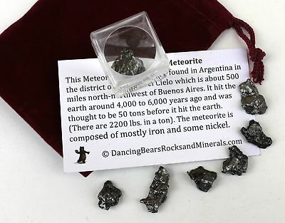 Dancing Bear Brand Meteorite from Space, 6 pcs Campo del Cielo from Argentina/