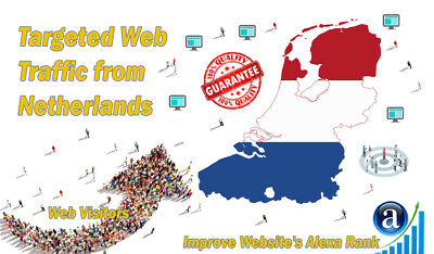 25000 Netherlands Visitors From Real Targeted GEO Traffic For SEO + Live Stats