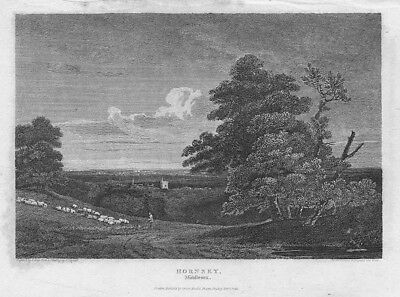 LONDON View at Hornsey, Middlesex - Antique Print 1811
