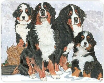 Bernese Mountain Dog Cutting Board Tempered Glass