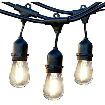 Brightech Outdoor Lighting Ambience Pro Commercial Grade Strand With Hanging 1W
