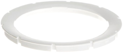 Pentair 619601 White Face Ring Assembly Replacement AquaLumin III Pool and Spa
