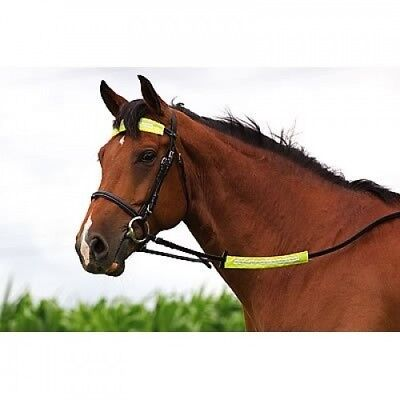 (Pink) - Reflective Horse Riding Nose/Rein/Brow/Strap Band - Soft & Waterproof