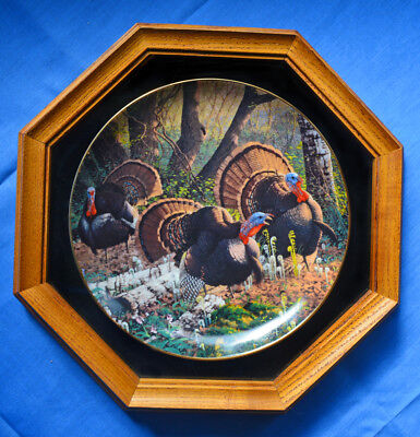 Wild Turkey We Three Kings Wild Wings Framed Collectible Plate Painting