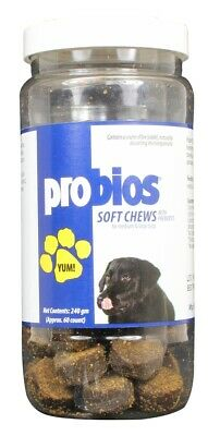 Probios Soft Chews for Large Dogs (60 count)