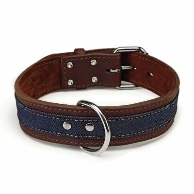 Beeztees Collare Collarino per Cani Cane Morbido Denim in Pelle 45 mm 52-61 cm