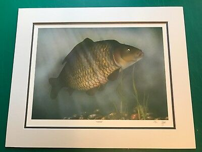 Common Carp painting signed limited edition print by artist James Green