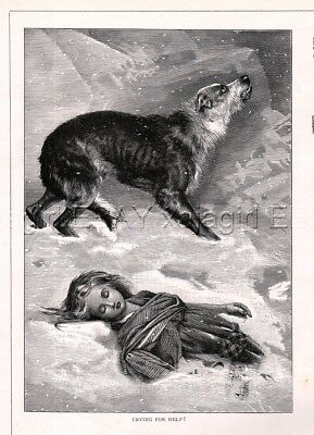 DOG Scottish Deerhound Rescues Girl, Shepherd Rescues Sheep Quality 1880s Print