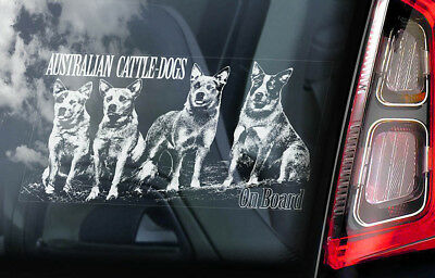 Australian Cattle Dogs - Car Window Sticker - Cattledog Dog Board Decal Sign V01