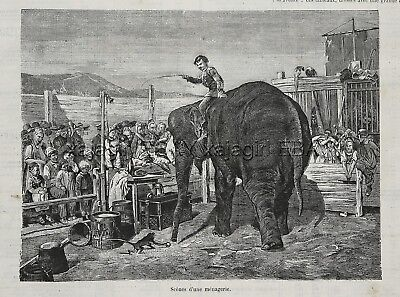 Elephant & Monkey at Rural Circus Menagerie of Animals Large 1870s Antique Print