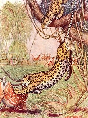 Leopard Hunting 100 Yr-old Antique Print, Louis Sargent