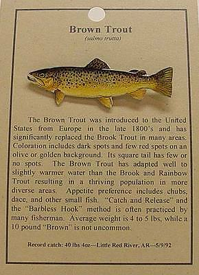 New Brown Trout  Fish Hat Pin Lapel Pins
