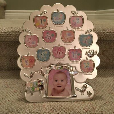 My 1st Year Baby Picture Frame Picture Display 12 Months Birthday Gift