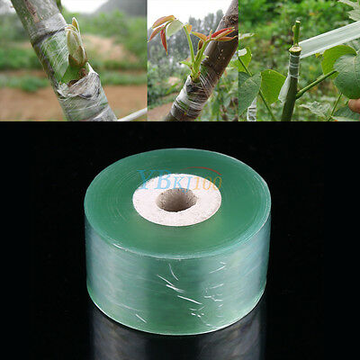 100M Garden Nursery Grafting Tape Stretchable Self-adhesive PVC Degradable inm