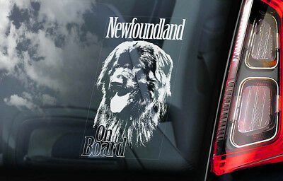 Newfoundland on Board - Car Window Sticker - Landseer Newf Dog Sign Decal - V01