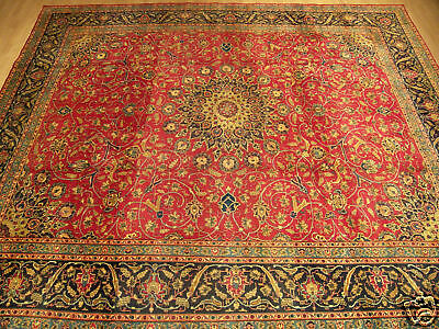 9.9 x 12.9 Vintage Handmade Antique Fine Knots Persian Oriental Rug _ Soft Wool
