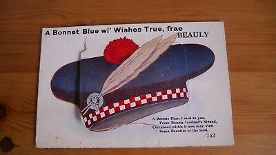 Antique Postcard A Bonnet Blue Wishes True Novelty Fold Out Valentine Novelty