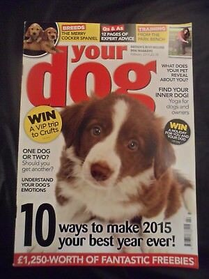 Your Dog Magazine - February 2015 - Cocker Spaniel - Understand dog's emotions