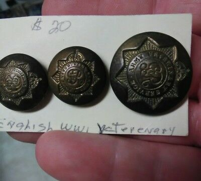 WW1 English Army Veterinary Service Buttons Set of Three