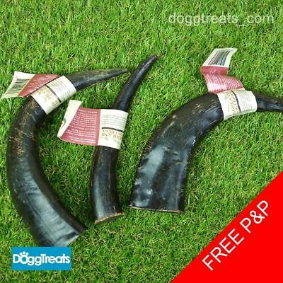 Buffalo Horn Dog Chews Antos - Natural Chew Long Lasting Tough Treat Bull Bar