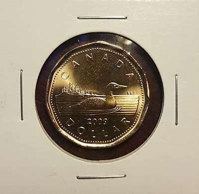 2009 $1 Dollar Canada Loon / Loonie - From Mint Roll - In Coin Flip