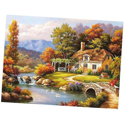 Canvas DIY Digital Oil Painting Kit Paint by Numbers No Frame Decor 16x20 i D6P1