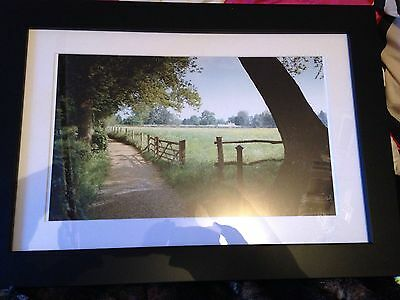 Decorative Framed Colour Photograph Of Country Lane. Freepost